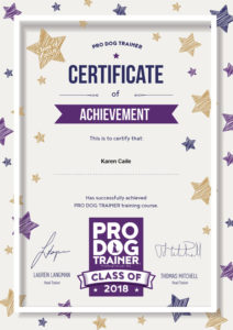 Certified Pro Dog Trainer certificate