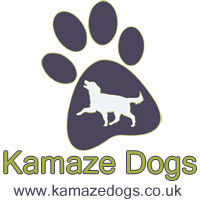 Dog training, dog walking, house and pet sitting West Dorset, South Somerset