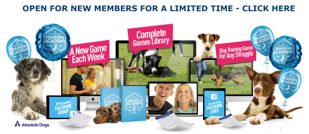 Absolute Dogs Training Academy open for new members April 2020