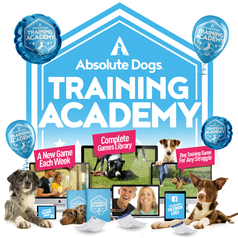 Absolute Dogs Training Academy membership
